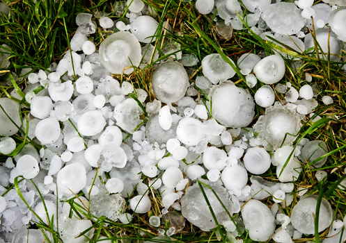 How To Prevent Hail Damage And Stay Safe