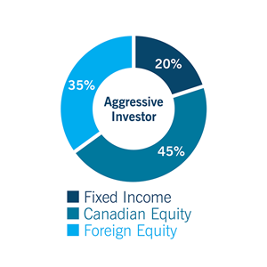 Pie chart for Aggressive investor: Fixed Income 20%, Canadian Equity: 45%, and Foreign Equity: 35%